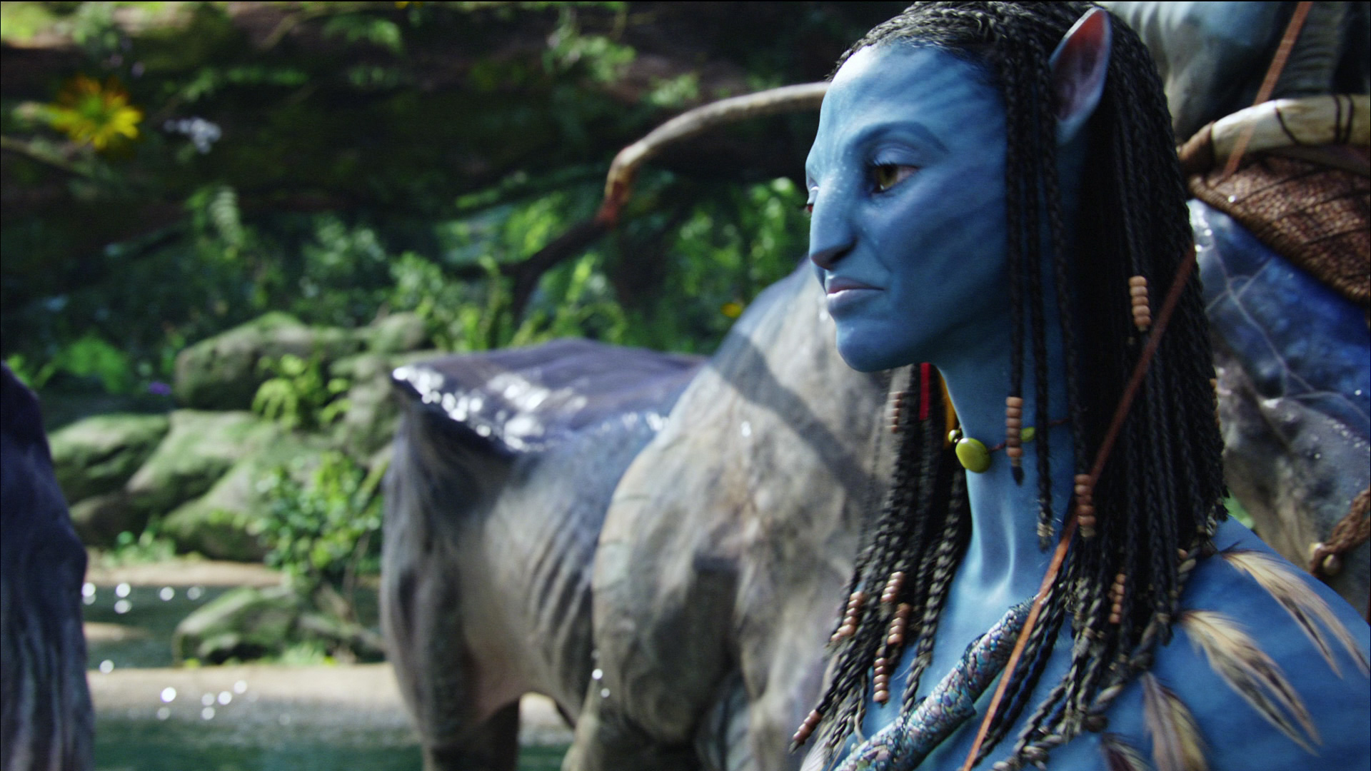 avatar film techniques Near the beginning of the film jake is submissive to the rda and colonel quaritch who is head of security especially refers to the na'vi's ways as tree hugger crap - suggests that he has no respect for them or their beliefs after jake has been taught the ways of the na'vi he learns to respect.