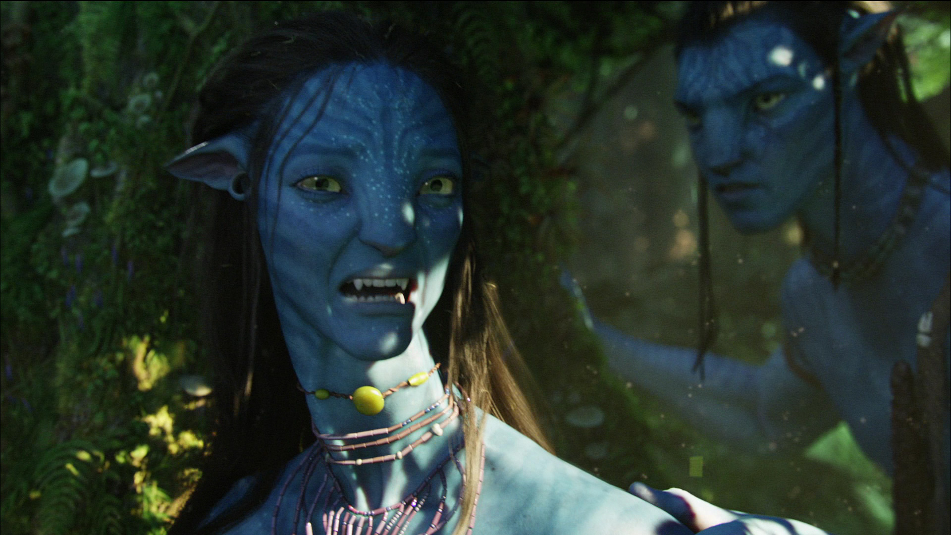 anthropological themes in avatar James cameron's avatar is an epic science fiction action drama movie this film, even though it is a fantasy, contains so many scenarios that.