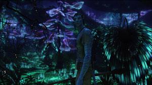 Кадры фильма Аватар  № 1386537 без смс