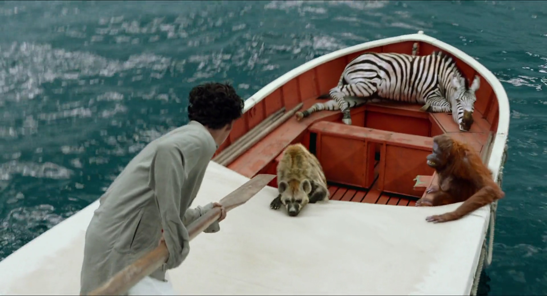 Life of pi 201 for Life of pi characterization